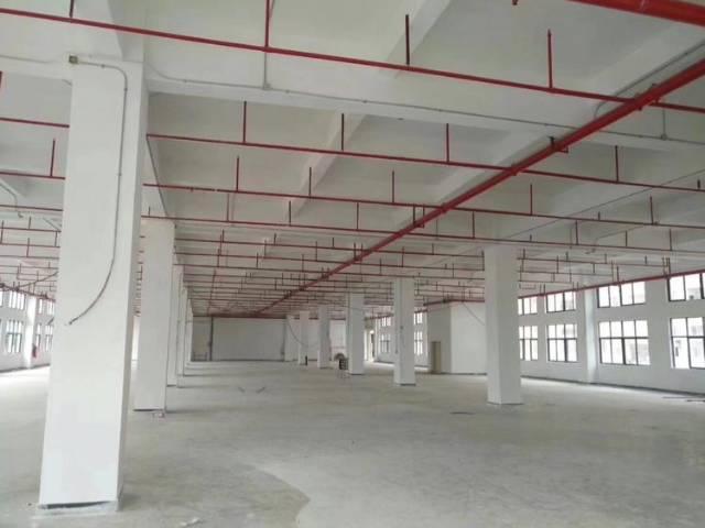 惠州市全新独院红本厂房45000平招租