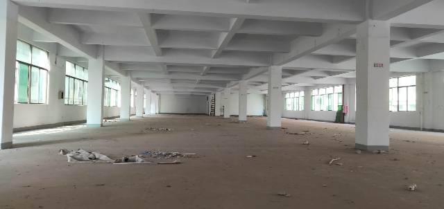 惠州陈江,独院厂房,8000㎡带卸货平台