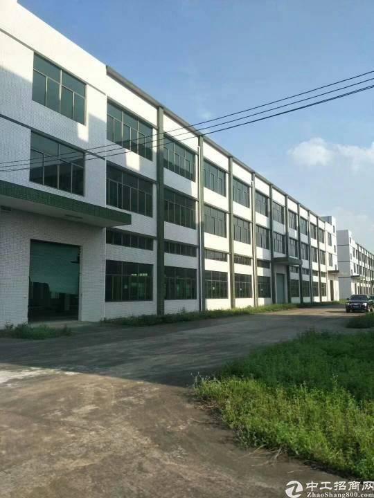 惠城区新出证件齐全独门独院标准厂房招租