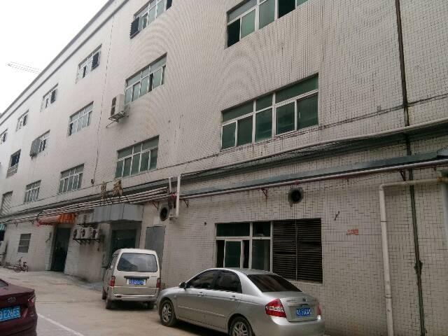 厚街桥头独院厂房4楼1210平低价招租,现成货架非常适合仓库