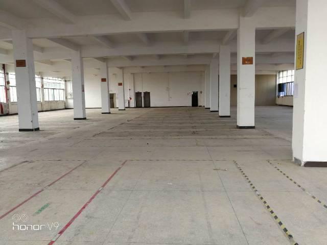 黄埔区文冲街道厂房出租-图2