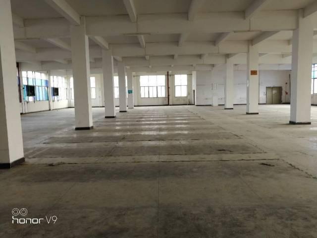 黄埔区文冲街道厂房出租-图4