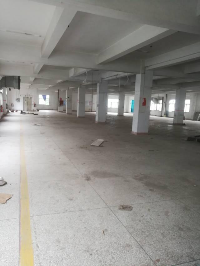 横岗六约一楼整层面积2000平米厂房招租