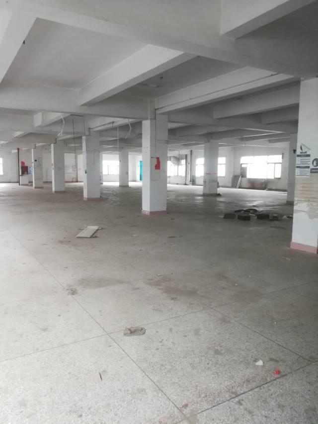 横岗六约一楼整层面积2000平米厂房招租-图2