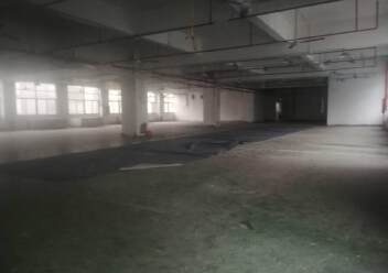 深圳公明李松蓢新出二楼小面积厂房,有前台办公室图片4