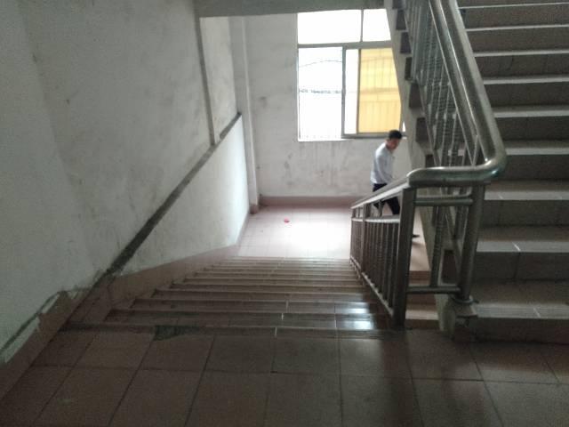 樟木头镇百果洞管理区有标准厂房二楼分租300平