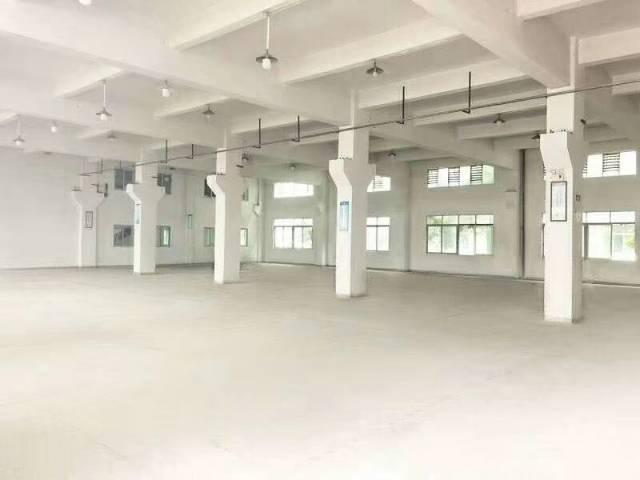 投资自用,超级笋盘!东莞水乡片区独门独院单一层厂房出售