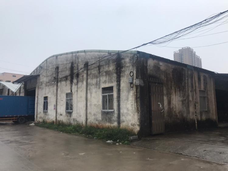 大朗镇中心新出1400平方原房东钢构仓库厂房