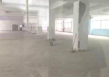 福永凤凰单层1350平米出租!图片4