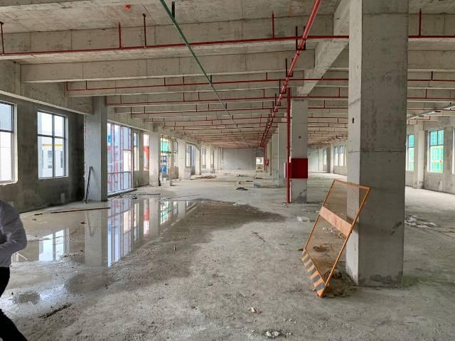 1300平园区全新厂房,有红本,50年产权,可按揭-图2
