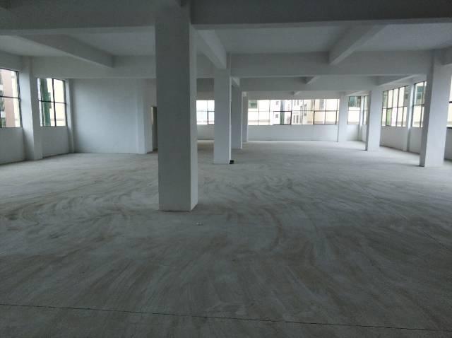 惠阳区秋长原房东全新厂房500-800平方,无公摊-图4