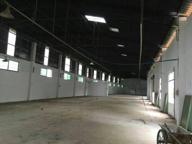 简易独院5500平方米厂房出租-图4