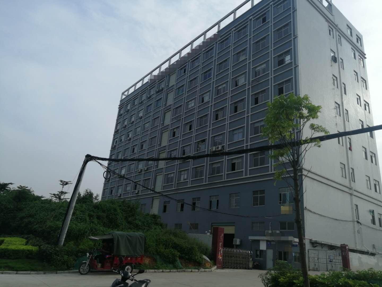 光明圳美光侨路边高新园区楼上豪华装修1100平方出租
