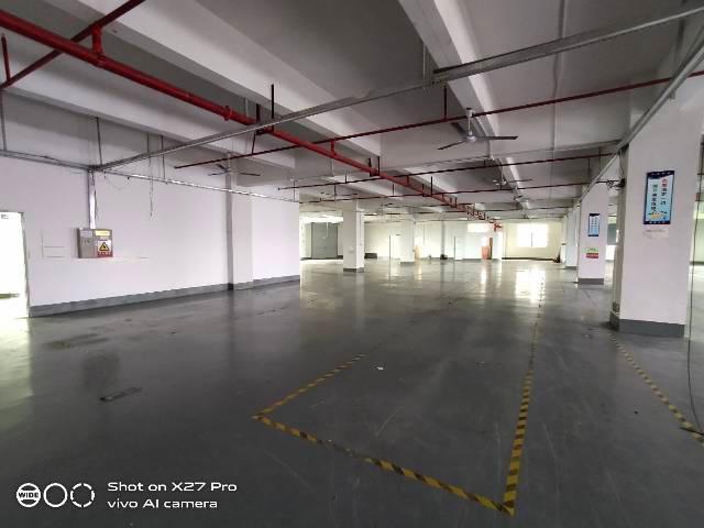 塘厦沙湖高端工业园新出3楼2000㎡带现成办公室原房东厂房-图2