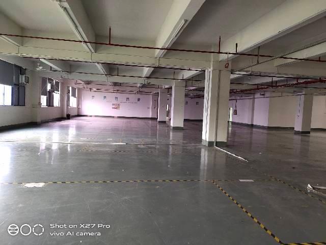 塘厦沙湖高端工业园新出3楼2000㎡带现成办公室原房东厂房-图4