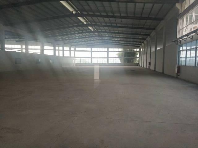 惠州市博罗县罗阳镇大型工业园钢构厂房招租,环评包过