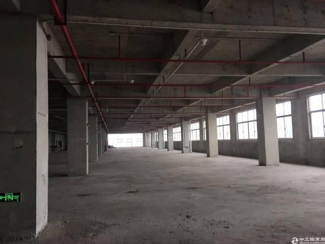 常平1500平在在建厂房,整栋11000平-图2