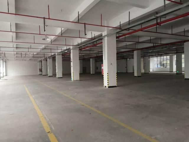 惠州沥林新出花园式独门独院厂房总面积50000㎡出租