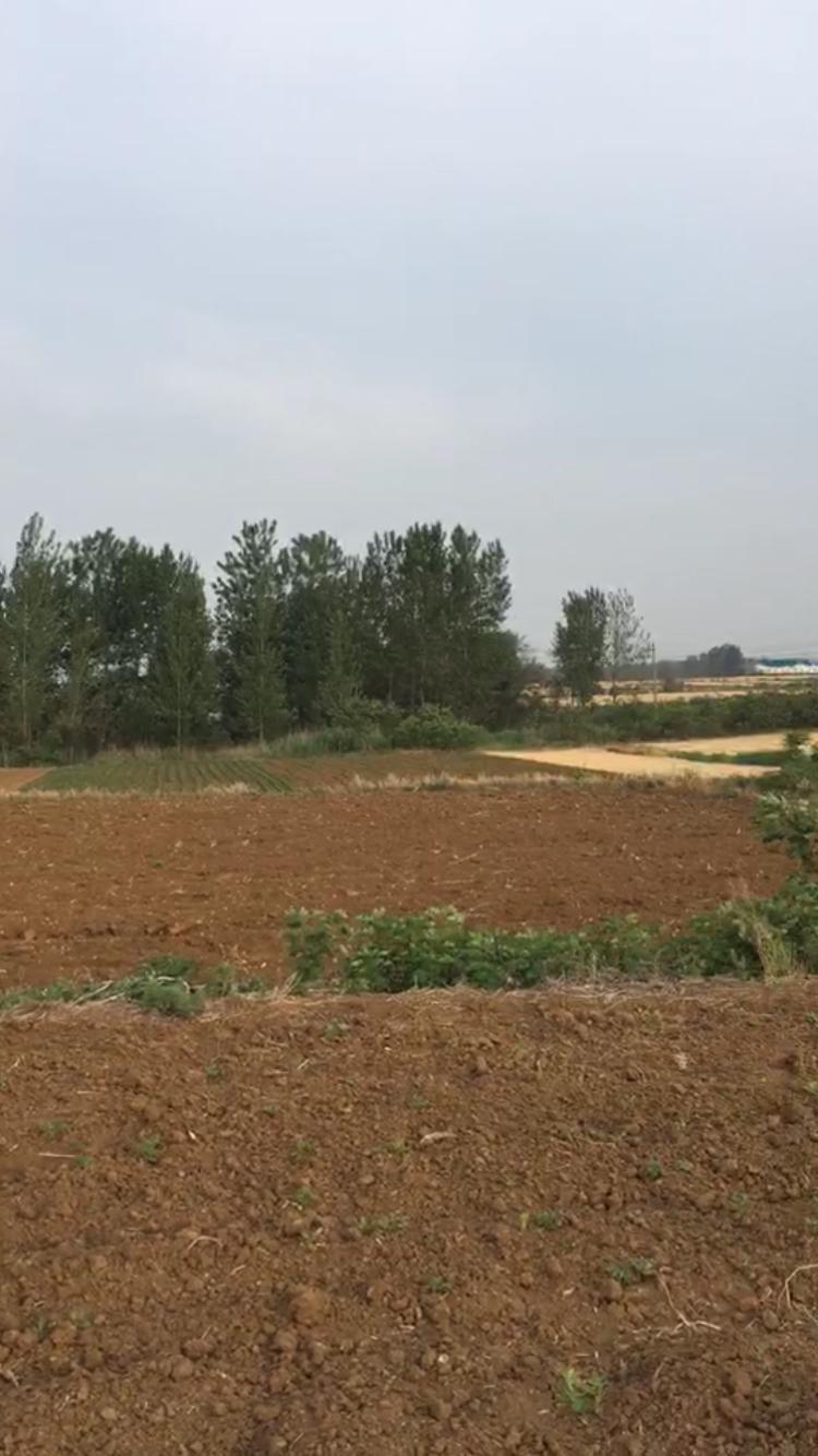 佛山333亩红本工业用地出售