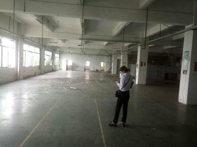 惠州市惠城区马鞍新出1000平方厂房