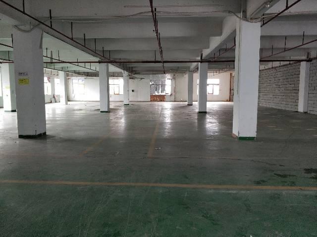 惠阳区秋长原房东全新厂房500-800平方,无公摊-图2