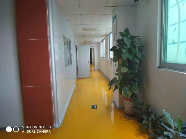 樟木头镇标准厂房二楼无尘车间1250平方出租