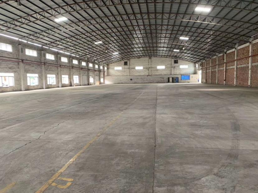 广州主干道旁消防证、房产证齐全可做布料仓库3000平出租