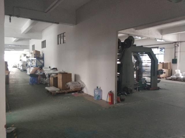 樟木头镇樟洋社区标准厂房出租1000平,只做仓库-图3