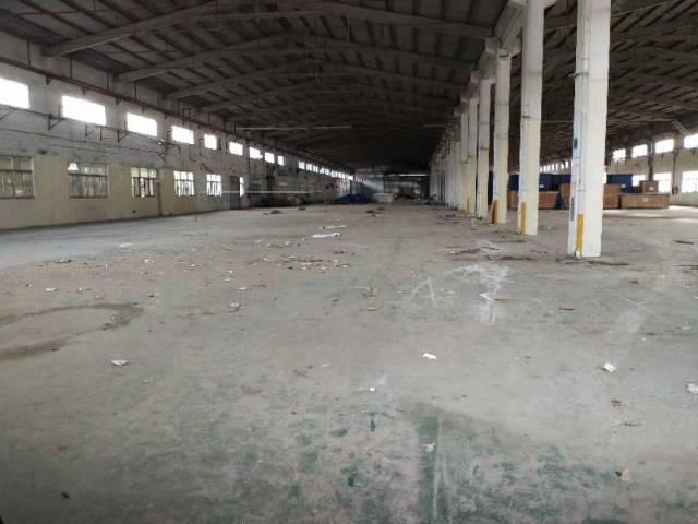 大岭山单一层钢结构4600平方招租