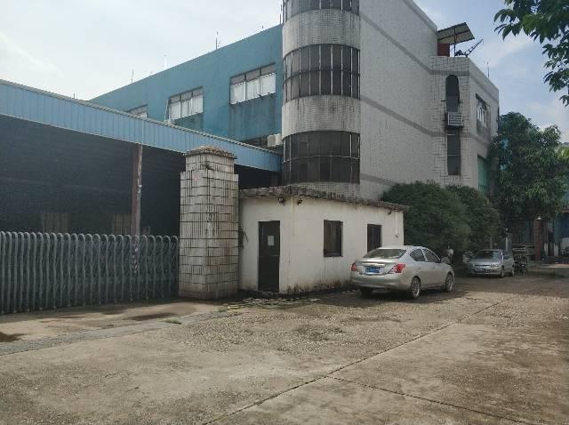 樟木头镇樟洋社区标准厂房出租1000平,只做仓库-图2