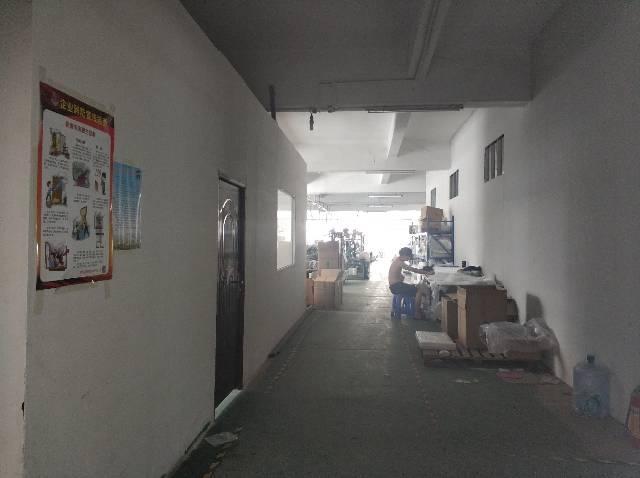 樟木头镇樟洋社区标准厂房出租1000平,只做仓库