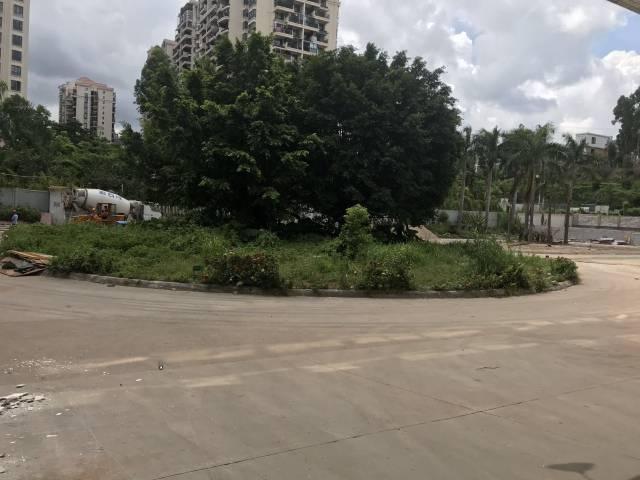 坂田板李大道风门路附近新出4楼2000平方