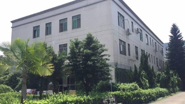 虎门镇沙角大型工业园厂房-图5