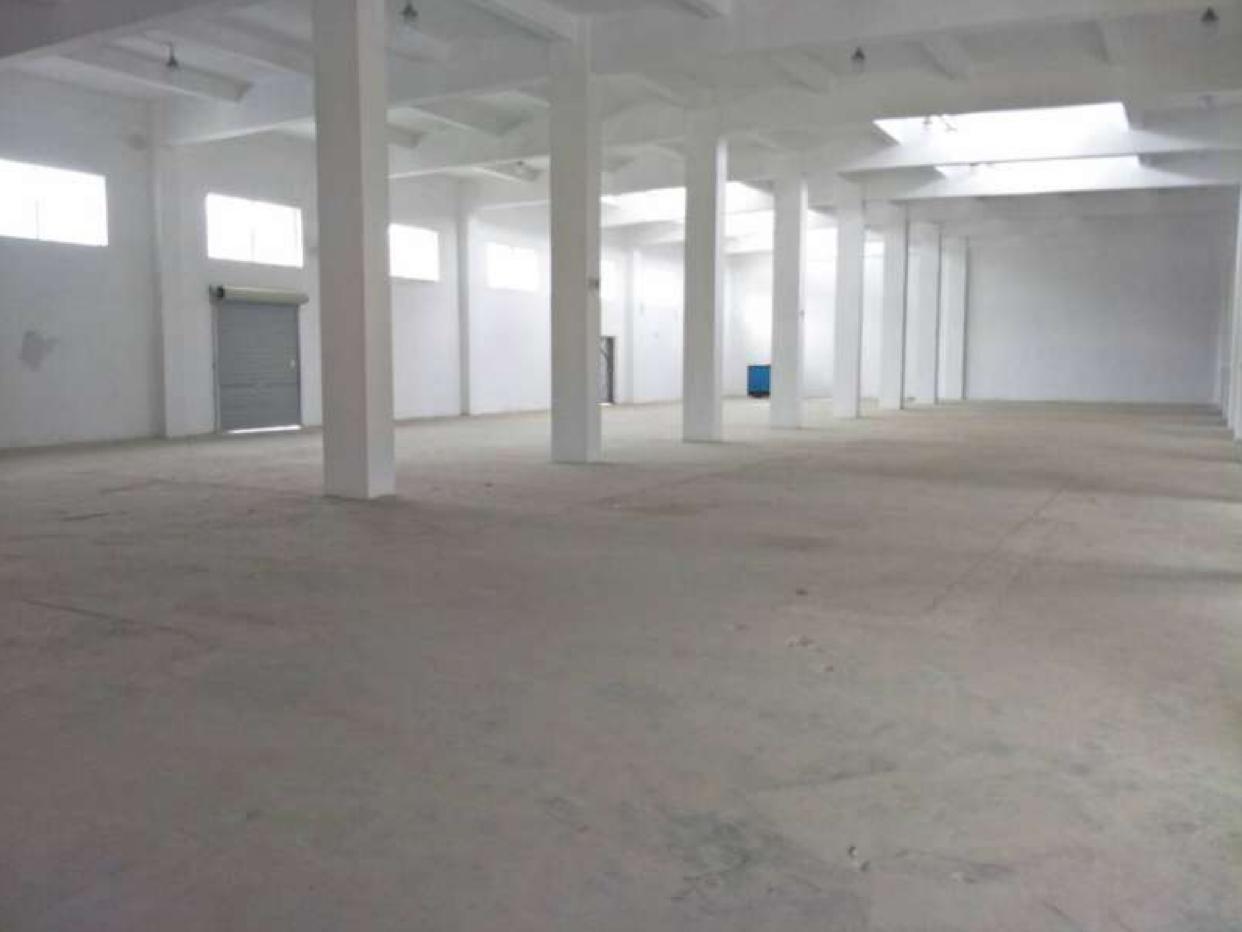 独栋物流仓库出租,有卸货平台,1300方,8米高