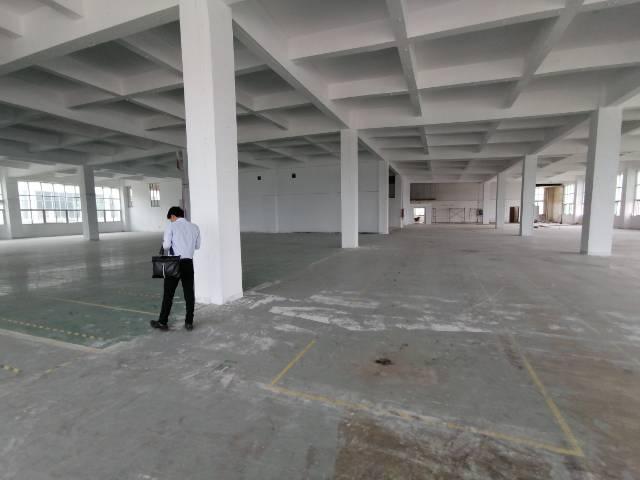 光明大型工业园新出楼上2000平厂房出租
