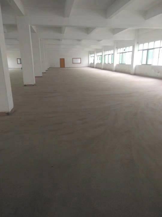 深圳市光明新区上村带红本独门独院1-2层2400平厂房出招租