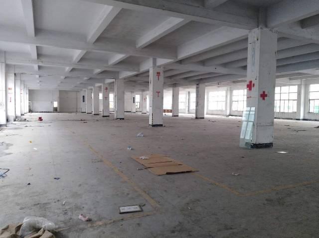 白云区石马村厂房仓库招租1100平方大小可分租