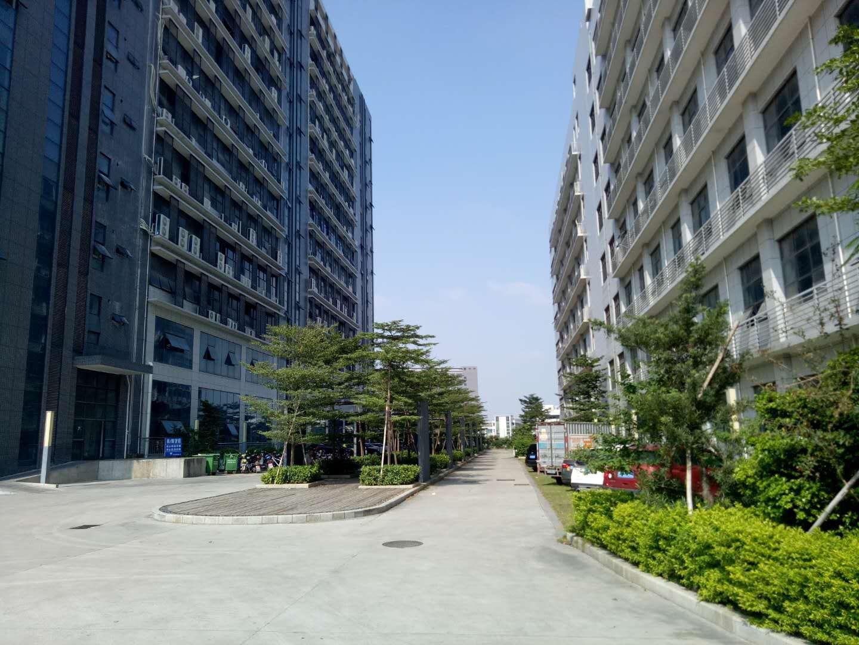 光明楼村原房东1500平方楼上带装修厂房出租