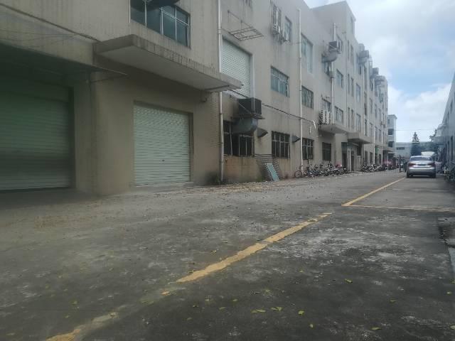 深圳新出一楼带装修标准厂房