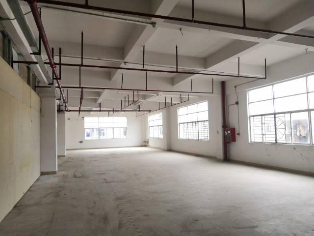 横岗安良二楼1500平方带消防喷淋不限行业出租-图3