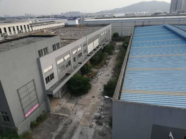 正规牌照,原房东,洗水,漂染洗涤产业园区2万平方厂房
