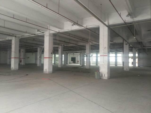7680平方米标准一楼带消防喷淋仓库出租