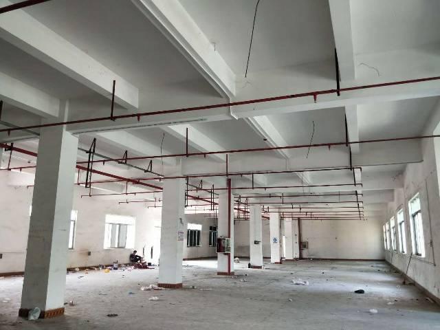 横岗大康一楼1300平方5米高带喷淋不限行业出租