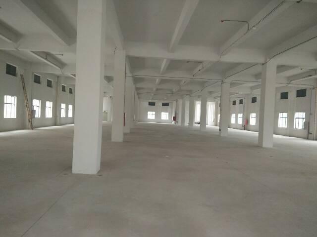 大朗镇挨着松山湖黄草朗村新出高新产业园10000平方出租-图2