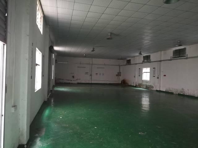 龙岗区横岗地铁口800米新出一楼1600㎡-图3