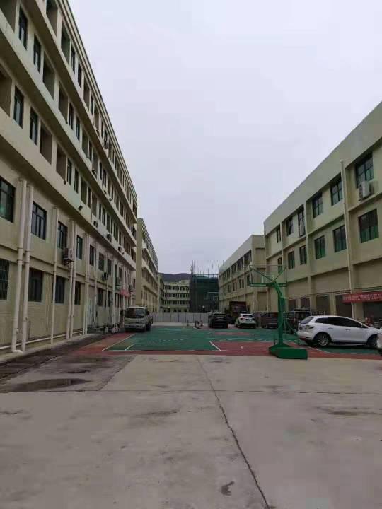 惠州占地5000方厂房出售-图3