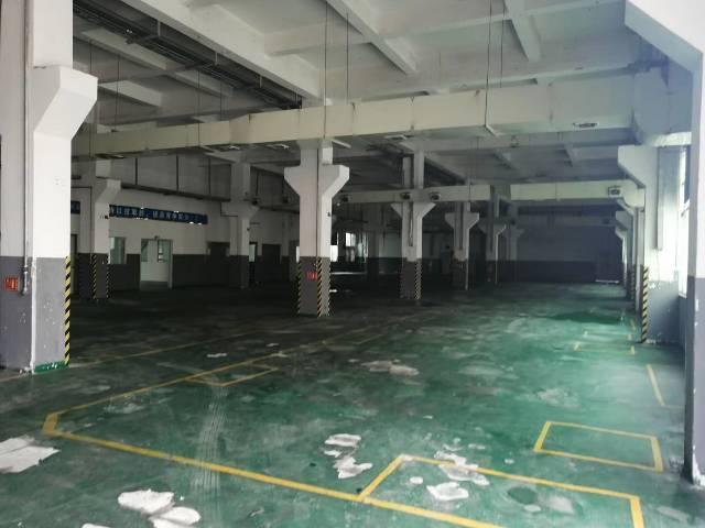 福永宝安大道边上一楼2200平米出租一楼6米高-图3