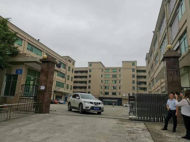 惠州沥林新出花园式独门独院厂房总面积50000㎡出租-图3