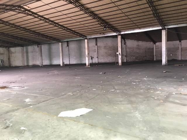 纸品仓库,物流,饮料仓库。平湖新出2480平,7米高