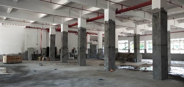 罗阳镇新出原房东无公摊标准厂房-图2